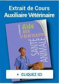 cours auxiliaire vétérinaire