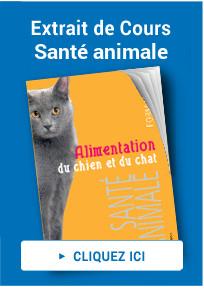 Extrait de cours santé animale