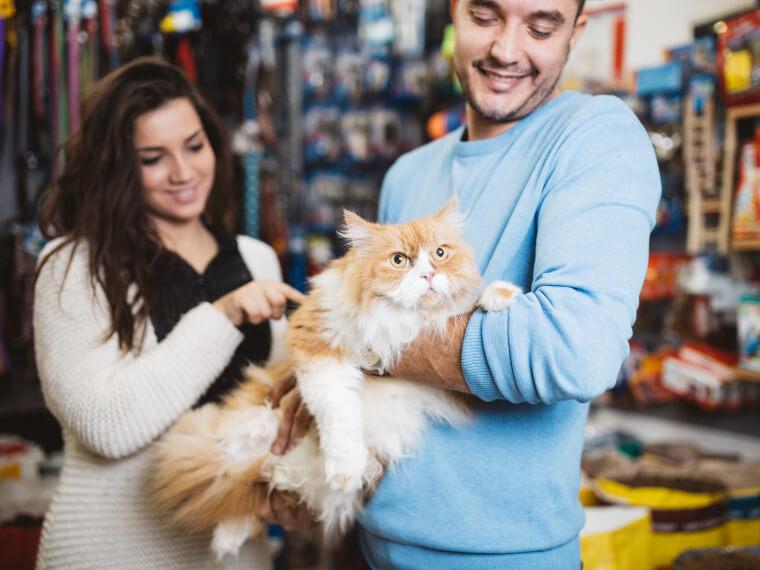 métier vendeur en animalerie