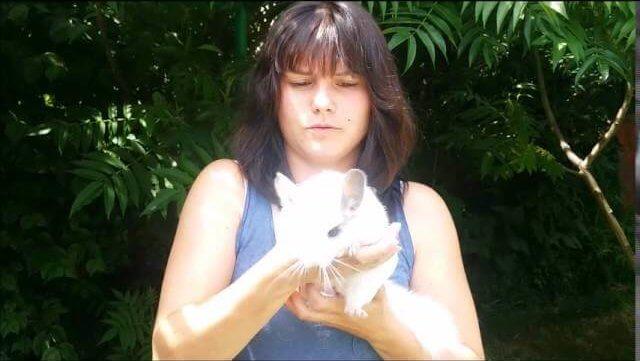 avis sur la formation métiers animaliers