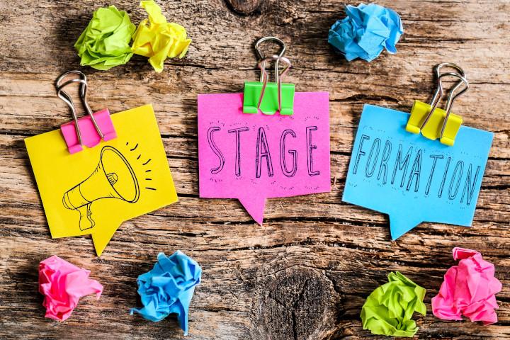 L'importance de réaliser des stages